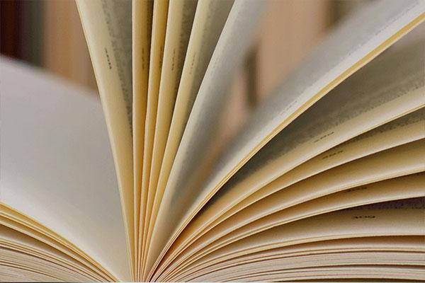 Seiten eines aufgeklappten Buches